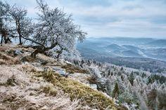 Wandern – Děčínský Sněžník, Hoher Schneeberg