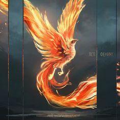 Phoenix Painting, Phoenix Artwork, Pheonix Drawing, Phoenix Tattoo Design, Phoenix Bird Tattoos, Harry Potter Painting, Dark Art Drawings, Bird Art, Art Pictures