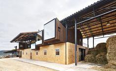 """Gallery of """"La Llena"""" Equestrian Center / Vicente Sarrablo + Jaume Colom - 5"""