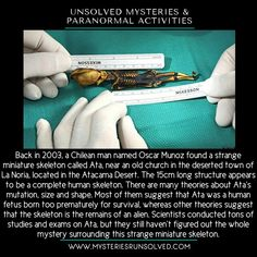 Back in a Chilean man named Oscar Muñoz found a strange miniature skeleton called Ata, near an old church in the deserted town of La Noria, located in the Atacama Desert. True Interesting Facts, Interesting Facts About World, Intresting Facts, Wow Facts, Real Facts, Wtf Fun Facts, Weird History Facts, Creepy Facts, Amazing Science Facts