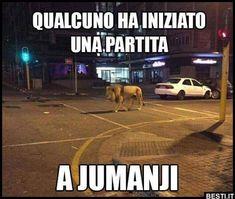 Great Memes, Funny Video Memes, Daily Jokes, Cool Illusions, Italian Memes, Funny Scenes, Funny Times, Harry Potter Memes, Cartoon Pics