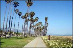 Santa Barbara has it goin' on in the bike trail department.  Destinations along the bike trail include beach & the beautiful Santa Barbara Zoo.  Easy access to dining, shopping and museums, all by bike.