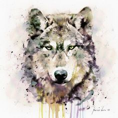 Wolf Head Watercolor painting Wildlife Wall art by Artsyndrome