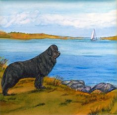 Newfoundland  Dog Art Tile By Sharon Nummer by caninepainter, $20.00