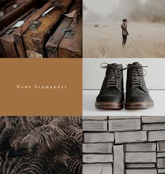 aly-naith: 100 aesthetic summer challenge  #22Fantastic Beasts... My blog posts