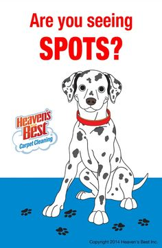 If you are seeing spots on your carpets or floors call on Heaven's Best to remove them. Your carpets will be dry in 1 hour. Call in the Phoenix AZ area