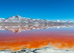 Algae and red sediment have turned Bolivia's Laguna Colorada red