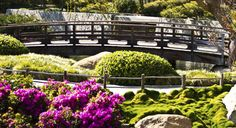 Jardim equilibrado pelo Feng Shui  http://www.leroymerlin.com.br/tendencias/jardim-equilibrado-pelo-feng-shui