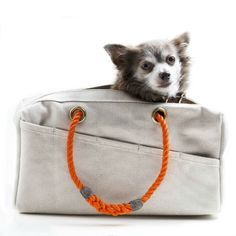 Canvas Dog Carrier & Utility Tote | Snazzy Jazzy Pet