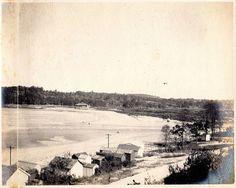 From Sea Cliff towards Glen Cove creek, 1906