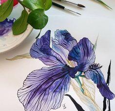 Watercolorist: @iruta_t #waterblog #color #art #paint Watercolor Fruit, Watercolor And Ink, Watercolour Painting, Watercolor Flowers, Watercolors, Botanical Flowers, Botanical Prints, Botanical Illustration, Illustration Art