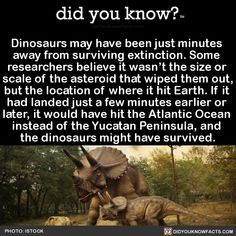 dinosaurs-may-have-been-just-minutes-away-from