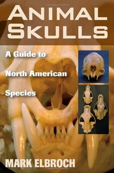 Maders understanding human anatomy and physiology 7th edition pdf animal skulls a guide to north american species by mark elbroch fandeluxe Gallery