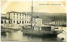 Adquisicions MMB 2015. Laboratori Aragó (Banyuls-sur-Mer). Ca. 1900. Autor desconegut. MMB (Col•lecció Hereus de Maria Möller Bertran)