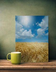 summer harvest wheat sky clouds landscape summer Landscape