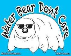Resultado de imagem para water bear