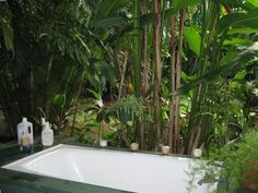 Not Available - Your  PRIVATE, romantic,candle lit Jungle Garden Tub for two! $120/night