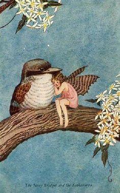 Illustration_The Fairy Bridget and the Kookaburra by Ida Rentoul Outhwaite Fantasy Kunst, Fantasy Art, Illustration Noel, Vintage Fairies, Flower Fairies, Fairy Art, Magical Creatures, Graphic, Illustrators