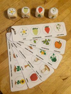 Vývojové stádia jahody, dýně, houby, slunečnice, melounu a jablíčka.