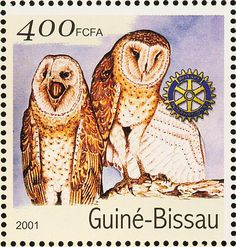 Eastern Grass Owl stamps - mainly images - gallery format