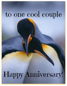 For a very special couple on their wedding anniversary.