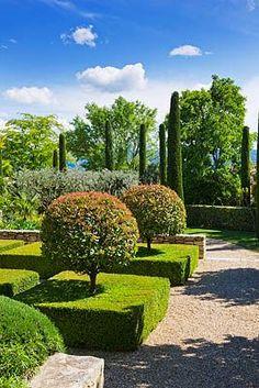 Meticulous landscape design. Boxwood around tress  awesome idea !