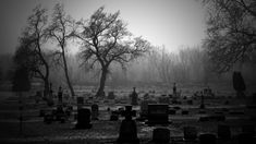 Spooky Graveyard HD Wallpaper