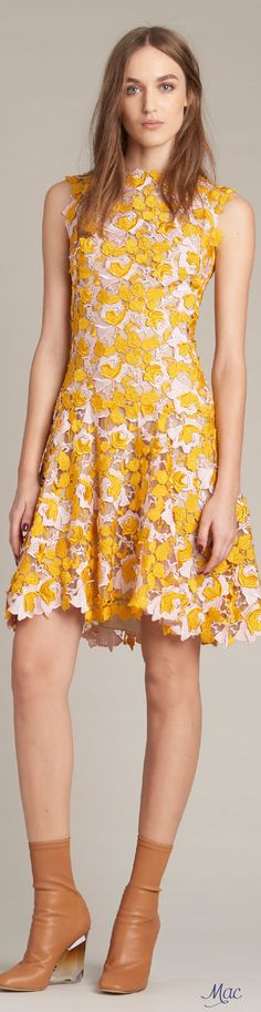 Pre-Fall 2016 Monique Lhuillier women fashion outfit clothing style apparel @roressclothes closet ideas
