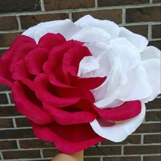 Buyer photo Crystal Martel, who reviewed this item with the Etsy app for iPhone. Giant Paper Flowers, Diy Flowers, Alice In Wonderland Props, Crepe Paper Roses, Mad Hatter Party, Wedding Photo Props, Wedding Photos, Bridesmaid Flowers, Flower Crafts