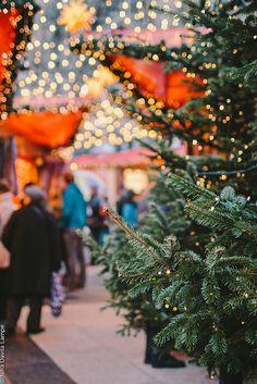 #Cologne #Germany #Christmas