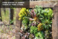 Cómo hacer un jardín vertical paso a paso.