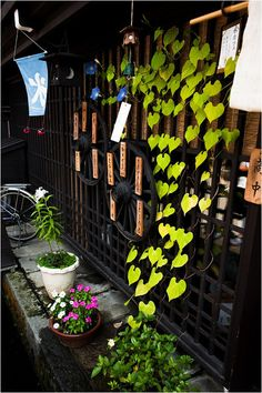 Exterior of some Japanese cafe. Morning Glories just for Trent  :)