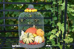 Betontablett mit Drahthaube, schöner Behälter für Herbstdeko - #OBI Selbstgemacht! Blog. Selbstbauanleitung für jedermann. #DIY