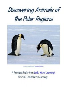 Discovering Animals of the Polar Regions Free Printable Pack -   The pack includes notebooking sheets for:  Arctic Fox * Emperor Penguin *  Polar Bear * Snowy Owl * Walrus * Beluga Whale * Puffin * Caribou * Harp Seal * Arctic Hare * Plus, there's a Who Am I? fact matching game at the end to give the kids a quick refresher on what they learned! All of the notebooking facts can be found easily using Wikipedia or any of the kids' science websites such as National Geographic Kids or Animal…