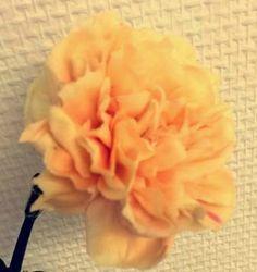 Nellik lys orange  form rund