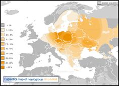 Distribution of haplogroup R1a-M458 in Europe