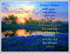 """Oh, my goodness, don't we ALL need to live in a place of PEACE? Jesus said we can. No excuses for not being in peace, because Isaiah 26:3 says, """"You will keep in perfect peace those whose minds are steadfast, because the trust in You."""" Filling our hearts with God's Word and seeking to follow Him is the way to walk in peace. He will make our hearts steady. Then the winds and turmoil of the world cannot shake us. :)"""