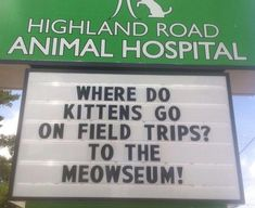 Funny Vet Clinics Signs About Cats Funny-Cat-Veterinary-Clinic-Signs Cat Puns, Cat Jokes, Funny Jokes, Silly Jokes, Animal Jokes, Funny Minion, Funny Animal, Funny Sports Pictures, School Pictures