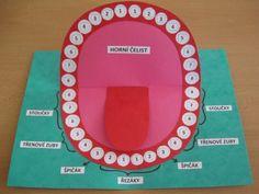 School Projects, Christmas Tree, Holiday Decor, Homeschooling, Preschool, Teeth, Biology, Teal Christmas Tree, Kid Garden