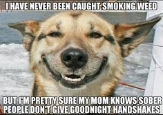 420 mom
