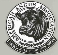 American Angus Association... My grandfather was president for many years...