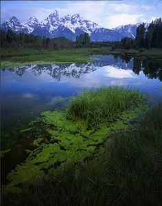 Accuweather.com fan photo of the Tetons, taken in Jackson, Wyo.