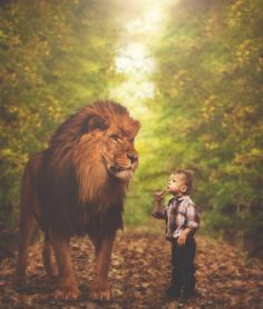 What a Picture! Lion And Lioness, Leo Lion, Lion Of Judah, Nicky Larson, Best Friend Images, Twin Models, The Lion Sleeps Tonight, Lion Love, Prophetic Art