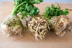 Celery Root Mash ~ Celery root purée, celery root boiled until soft, then mashed with butter and cream. ~ SimplyRecipes.com