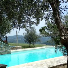 Housesitting assignment in Perugia, Italy