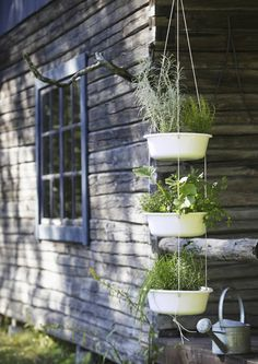 Herbs on porch Dream Garden, Home And Garden, Little Gardens, Unique Gardens, Green Art, Balcony Garden, Container Gardening, Outdoor Gardens, Garden Design
