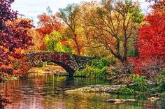 Fall Foliage around Gapstow Bridge in New York's Central Park