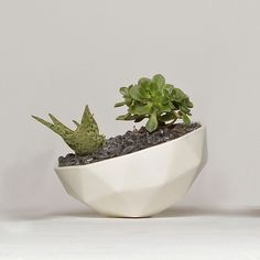"Geo Planter 9"" by Kelly Lamb Studio 