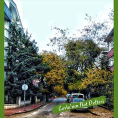 Beytepe Yolları ve Ankara Ankara, Plants, Blog, Blogging, Plant, Planets