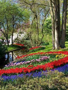 Keukenhof Gardens,